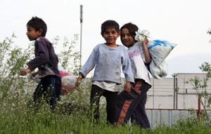 romskistandart